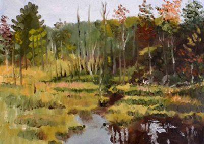 Autumn Beaver Pond Bass Lake Muskoka