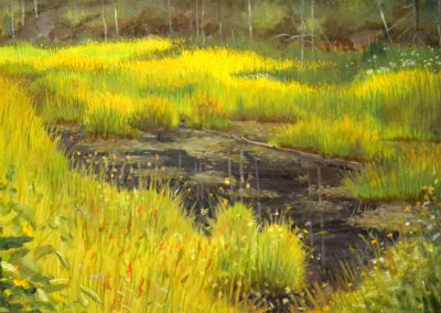 Beaver Pond Muskoka