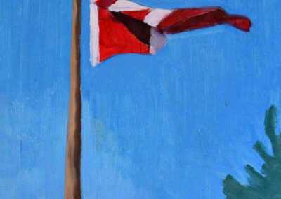 Canadian Flag Study