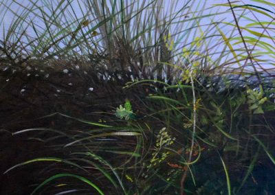 Grass Muskoka