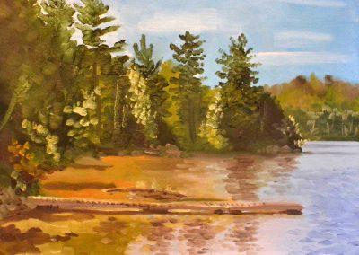 Long's Point Bass Lake Muskoka