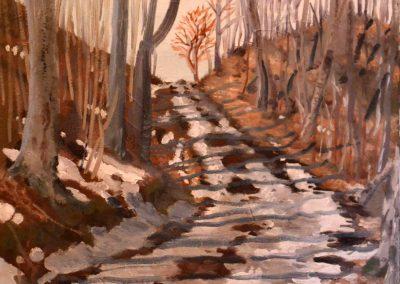 Winter Bass Lake Road Muskoka